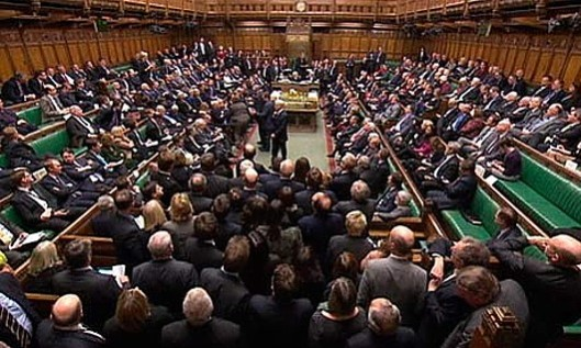 Get your votes out: But Vox Political believes there are probably far more MPs in this photograph than bothered to vote in the amendment to the Queen's speech seeking a commitment to an EU referendum.