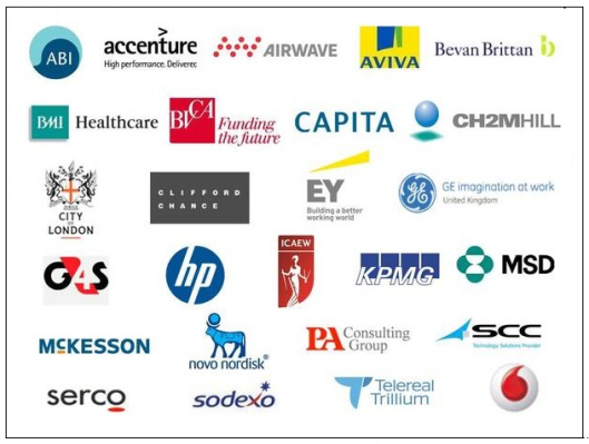 Corporate 'partners': These are just some of the companies that 'work with' your representatives in Parliament. Wouldn't it be better if the relationship was kept at arms-length and your MP wasn't their employee?
