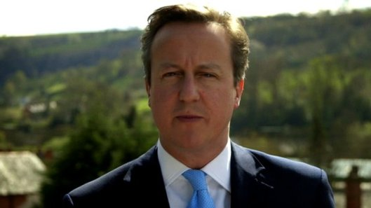 "David Cameron: ""Like an ox... a stupid animal."" [Image: BBC]"